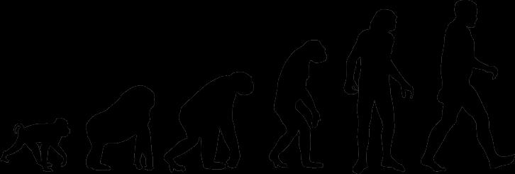 IDEA 2: TODO ES EVOLUCIÓN
