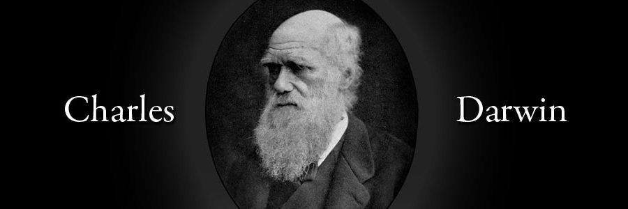DARWIN, LA EVOLUCIÓN Y TU EMPRESA